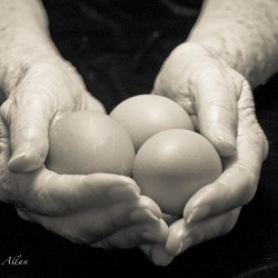 Mother's holding egg hands with Parkinson's Disease