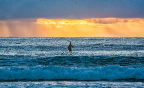 paddleboarder maui outbound youth ocean hawaii dawn sunrise