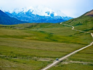 Long Road to Denali
