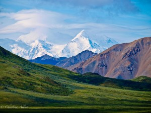 Mt. Denali/McKinley