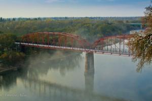 Fair oaks pedestrian bridge fog
