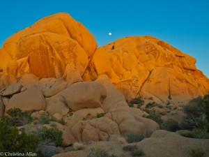 Joshua Tree National Park Jumbo Rocks