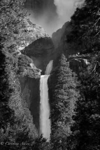 Middle Lower Yosemite Falls