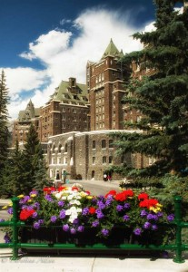 Flowers at the Banff Springs Hotel
