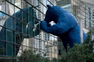 Blue Bear and Reflection