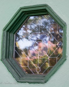 2305 T Street Octagonal Green Window