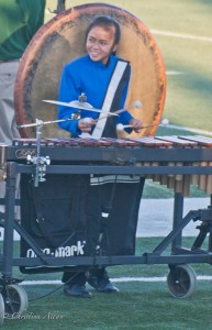 Mallet Player