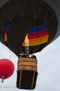 Blac-red-balloons-reno-races-allan DSC6138