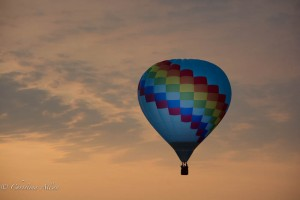 Blue-balloon-Sunrise-Reno-Races-Allan DSC6056