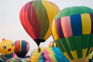 Fish-group-reno-balloon-races-allan DSC6053