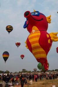 Seahorse-reno-balloon-races-allan DSC6210
