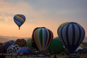 Solo-blue-checked-reno-balloon-races-allan DSC6055