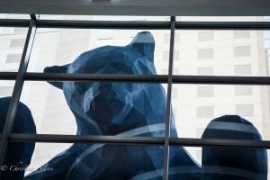 GALA Denver Convention Center Blue Bear face