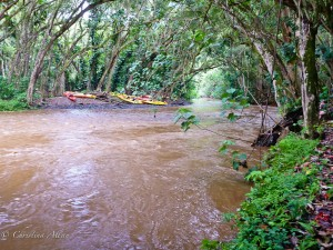 Flash Flood on the Wailua River