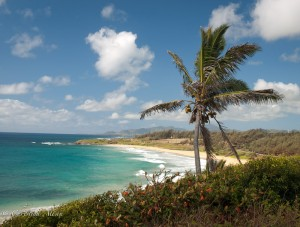 Kauai Lookout