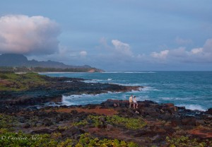 The Point at Poipu Coastline
