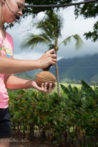 Cracking the Coconut