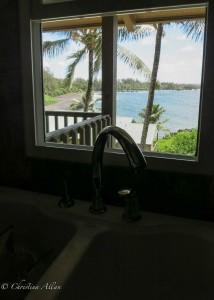 De's Kitchen Sink View