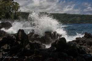 Waves at Kenai