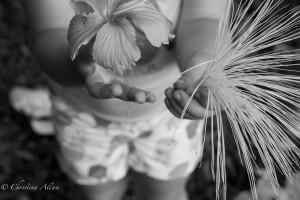 Flower Presentation