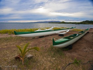 Outrigger Canoes on Molokai