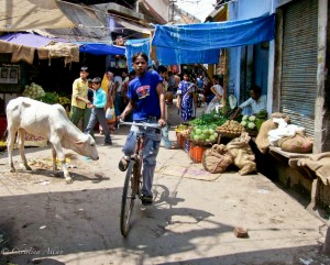 Boy on Bike in Agra