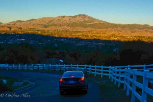 Mount Diablo Road View
