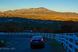 Mount Diablo Road View