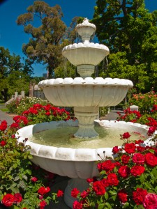 Fountain in Rose Garden