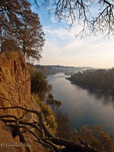 American River View at Dawn
