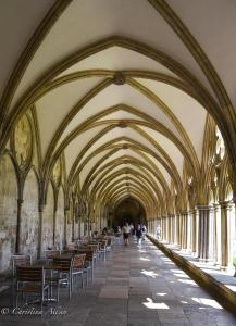 Cloisters Salisbury Cathedral Allan