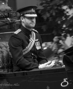 Harry, Prince of Wales, Royal Processions trooping the colour queen's birthday parade london allan