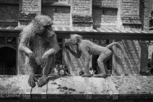 B&W Monkey sculptures Tower of London Allan