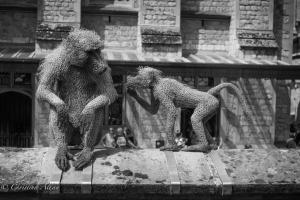 B&W Monkey sculptures Tower of London Allan