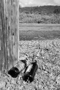 beer-bottles-bud-light napa allan