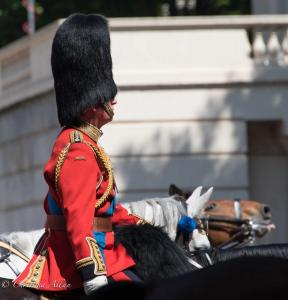 's birthday parade london allan DSC_2568