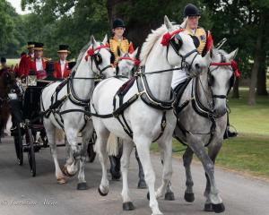Horse riders carriage royal ascot procession great windsor park DSC_3424