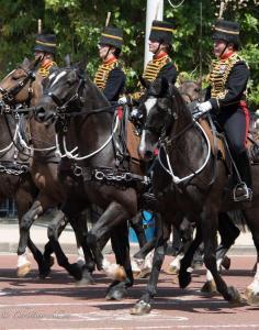 's birthday parade london allanDSC_2623