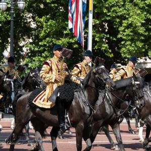 's birthday parade trooping the colour london allanDSC_2540