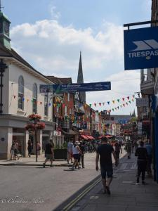 Street with pennants salisbury allan