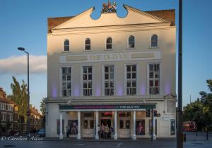 The Old Vic London Theatre Allan