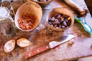 Found still life nutmeg mace knife grenada caribbean 2019-2503