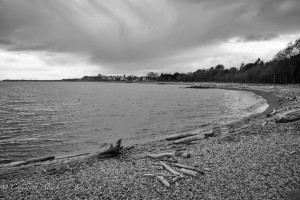Ross bay beach black and white victoria b.c. canada allan 0972