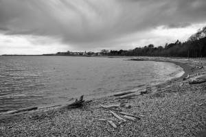 Ross bay beach black and white victoria b.c. canada allan 0972