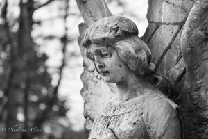 Side view Poole angel ross bay cemetery victoria b.c. canada allan 0931