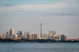 Toronto skyline with CN tower ontario canada allan DSC 1669