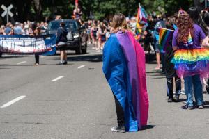 Bisexual flag cape person gay pride parade lgbtq sacramento california allan DSC 0155