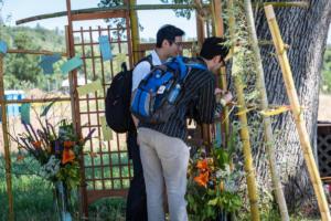 Two men tying feedback cards to bamboo posts wakamatsu allan -4767