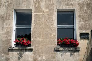 Windows red petunias Royal Crescent Bath England Allan DSC 3124